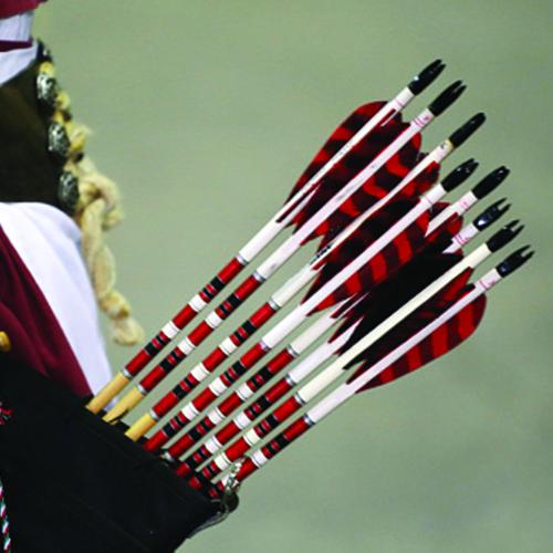 archery 21 arrow range - photo #34